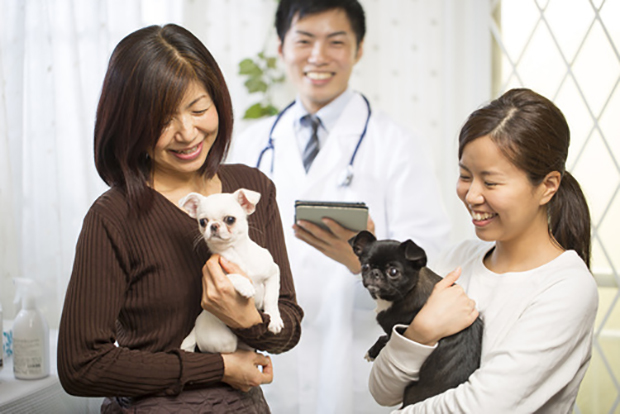 家族と犬画像