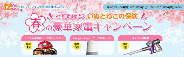 日本ペットプラス少額短期保険いぬとねこの保険春の家電プレゼントキャンペーン