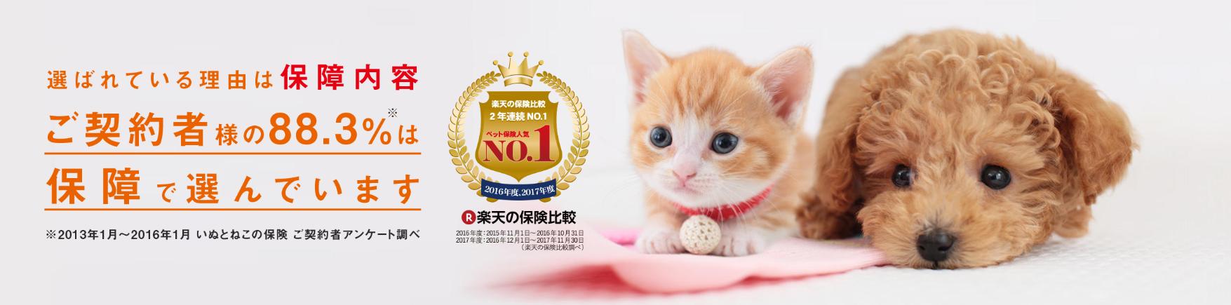 日本ペットプラス少額短期保険 いぬとねこの保険